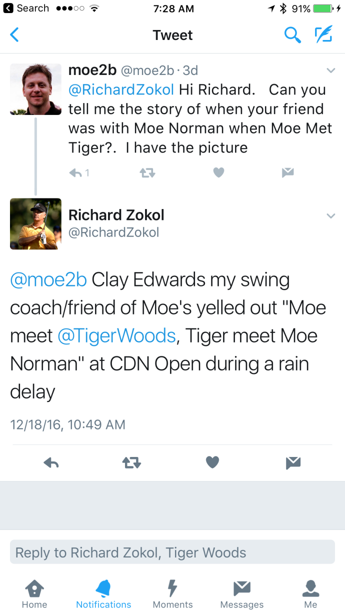 Tiger Meets Moe